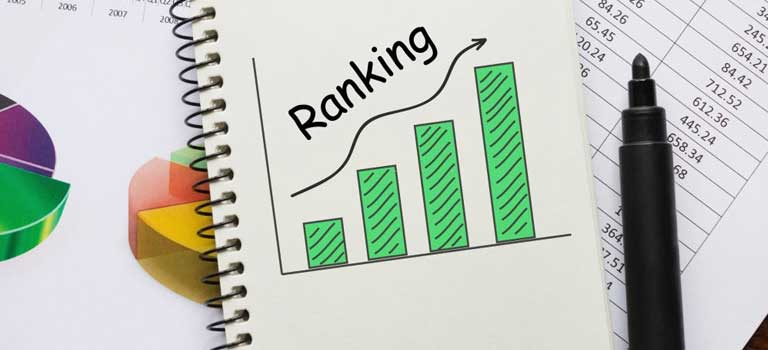 Website Ranking Check